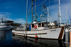 Commercial fishing boat docked at Fisherman`s Terminal in Seattle Washington royalty free stock image