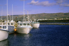 Commercial Fishing Boats. The tradionial industry of Cape Breton, Nova Scotia is fishing and lobster fishing. These commercial boats are a way of life for the stock images