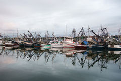 Commercial fishing boats at dawn Stock Images