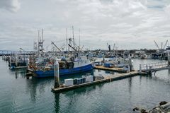 Commercial Fishing Boats Docked in San Diego Harbor. stock image