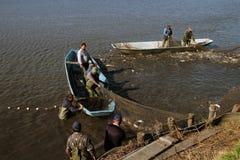 Commercial Fishing - Fishermen Pulling Fishing Net. Harvesting Fish at Fish Farm Stock Photography