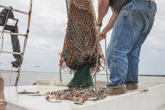 Commercial fishing Royalty Free Stock Image