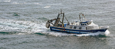 Commercial fishing trawler boat. On the mediterranean sea surrounded by gulls Stock Photography