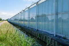 Perspective view of a greenhouse in Westland, the Netherlands. Commercial glass greenhouses in Westland. Westland is a region in of the Netherlands. It lies in Royalty Free Stock Photos