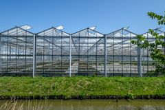 Frontal view of a greenhouse Westland in the Netherlands. Commercial glass greenhouses in Westland. Westland is a region in of the Netherlands. It lies in the Royalty Free Stock Photos