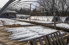 Commercial greenhouse in winter Royalty Free Stock Images