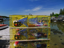 Commercial Lobster traps ready to work Royalty Free Stock Images