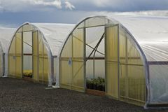 Commercial Nursery Greenhouses/Hot Houses/Frames stock photography
