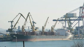 Commercial port cranes stock video footage