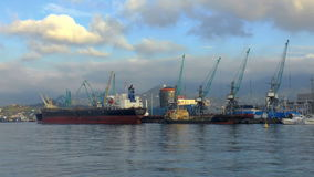 Commercial Sea Port. Batumi. stock video