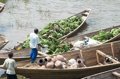 Commercial traffic of plantain along the lake Kivu Royalty Free Stock Photography