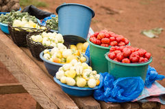 Commercial vegetable. These tomato, obergines, okra, placed in buckets and bowls for sale. This is a market alongside a great path Royalty Free Stock Photography