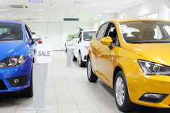 Commercially colourful shining cars stand. In light car shop Royalty Free Stock Photography