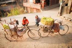 Commerciante della frutta che saling la loro frutta sulla bicicletta accanto alla strada nell'area capitale, Kathmandu, Nepal immagini stock libere da diritti