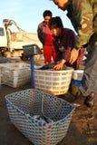 Commerciante di pesca Immagini Stock