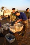Commerciante di pesca Fotografia Stock