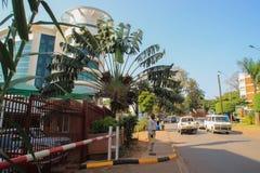 Commercieel centrum van de stad Straat met drie in de vorm van een palm stock afbeeldingen