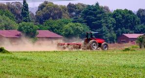 Commercieel Pea Farming met een Combine Maaidorser royalty-vrije stock foto's