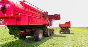 Commercieel Pea Farming met een Combine Maaidorser royalty-vrije stock afbeeldingen