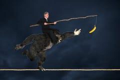 Commercieel Risicobeheer Royalty-vrije Stock Foto