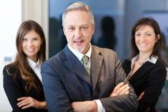 Commercieel team: groep zakenlui Stock Afbeeldingen