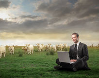 Commercio verde Fotografia Stock Libera da Diritti
