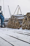 Commerical sea port of Vanino. Logs in bulk in commercial sea port of Vanino stock image