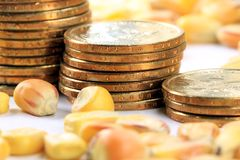 Commodity Trading Concept - Gold Coins US Currency with Yellow Corn Royalty Free Stock Photo