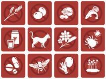 Free Common Allergies Stock Image - 45753991