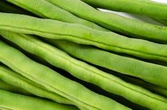 Common bean Stock Image