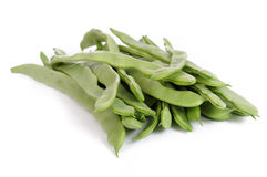 Common bean Stock Image