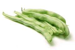 Common bean Royalty Free Stock Image