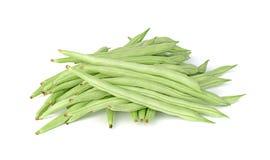Common bean isolated on white background Stock Photo