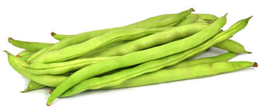 Common bean Royalty Free Stock Images