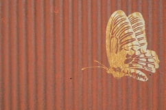 Common birdwing butterfly on old zinc background Royalty Free Stock Image