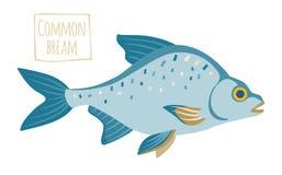 Common bream, vector cartoon illustration Stock Photography