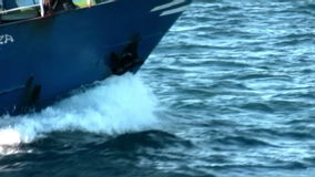 The common dolphins jump with the bow of a trawler stock video