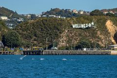 Common Dolphins Jump In Evans Bay Infront Of Iconic Wellington City Sign stock images