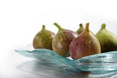 Common fig royalty free stock image