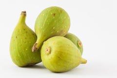 Common fig Ficus carica  Stock Photo