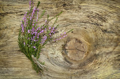 Common heather flowers on wooden surface Stock Photography