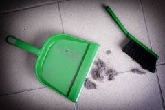 Common house dust Royalty Free Stock Photography