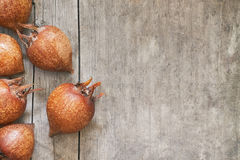 Common medlar fruit Royalty Free Stock Photos