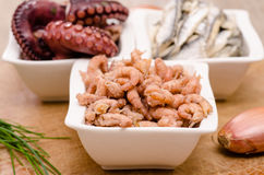 Common shrimps in a white bowl Stock Photography