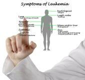 Common Symptoms of Leukemia Stock Photography