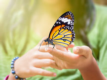 Common Tiger butterfly hanging on girl's finger Royalty Free Stock Photography