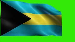 Commonwealth de las Bahamas, bandera de Bahamas - LAZO stock de ilustración