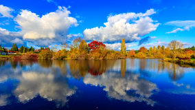 Commonwealth Lake Park. Colorful tree leaves by the lake, in Commonwealth Lake Park, Beaverton, Oregon Stock Image