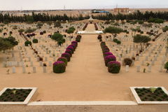 Commonwealth war cemetery at El Alamein. In Egypt Stock Photography