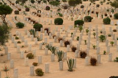 Commonwealth war cemetery at El Alamein. In Egypt Stock Images